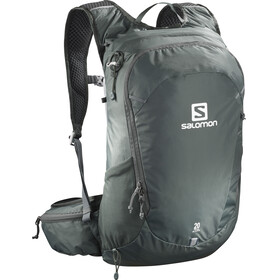 Salomon Trailblazer 20 urban chic/alloy